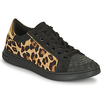 Sko Dame Lave sneakers Geox JAYSEN Sort / Leopard