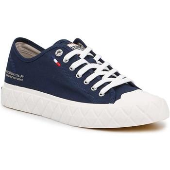 Sneakers Palladium  Ace CVS U 77014-458