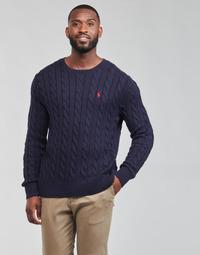 textil Herre Pullovere Polo Ralph Lauren KINNU Blå