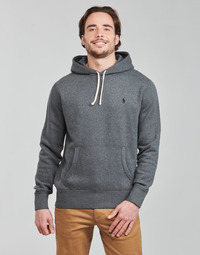 textil Herre Sweatshirts Polo Ralph Lauren OLIVIA Grå