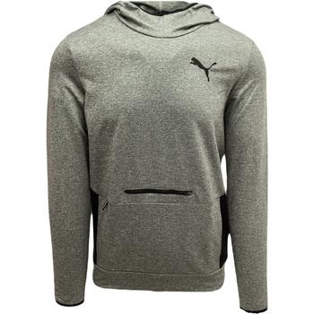 Se Sweatshirts Puma  RTG ved Spartoo