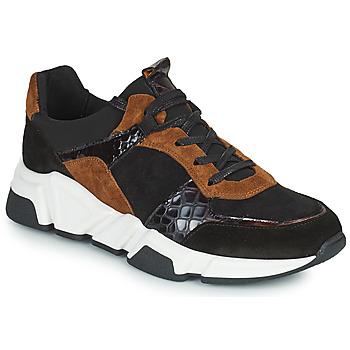 Sko Dame Lave sneakers Regard KENO Sort / Brun