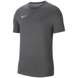 textil Herre T-shirts m. korte ærmer Nike Dri-Fit Park 20 Tee Grå