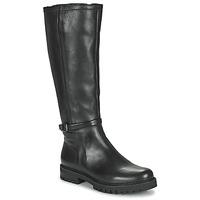 Sko Dame Chikke støvler Gabor 7272757 Sort