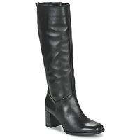 Sko Dame Chikke støvler Gabor 7562927 Sort