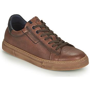 Sneakers Fluchos  NIKO