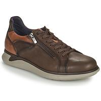 Sko Herre Lave sneakers Fluchos COOPER Brun