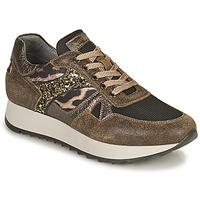 Sko Dame Lave sneakers NeroGiardini  Kaki / Leopard
