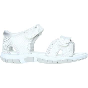 Sko Børn Sandaler Chicco 01063387000000 hvid