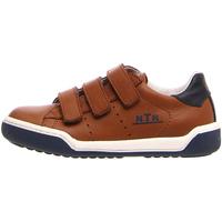 Sko Børn Lave sneakers Naturino 2014896 01 Brun
