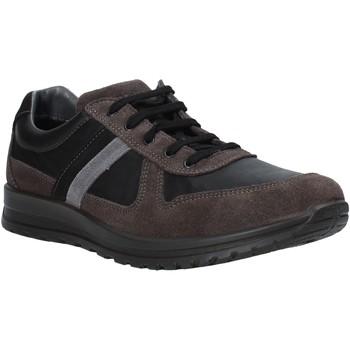 Sneakers Melluso  U15432E