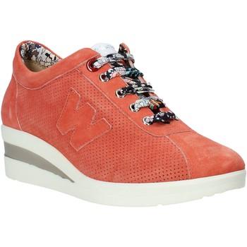 Sko Dame Lave sneakers Melluso HR20110 Orange