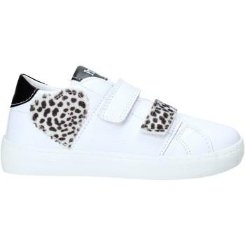 Se Sneakers Primigi  7421311 ved Spartoo