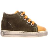 Sko Børn Høje sneakers Falcotto 2014600 12 Grøn
