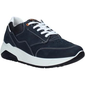 Se Sneakers IgI&CO  7125222 ved Spartoo