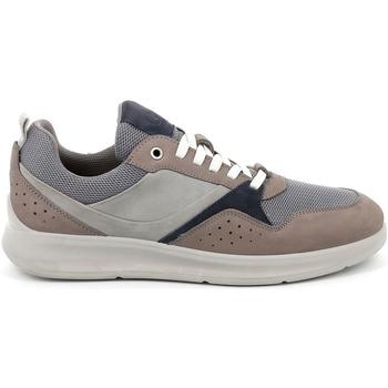 Sko Herre Lave sneakers Grunland SC5100 Grå