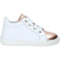 Sko Børn Lave sneakers Naturino 2012143 01 hvid