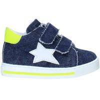 Sko Børn Lave sneakers Falcotto 2015350 13 Blå