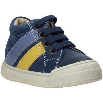 Sko Børn Lave sneakers Falcotto 2014606 01 Blå