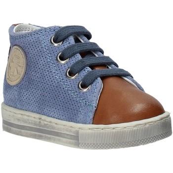 Sko Børn Høje sneakers Falcotto 2014600 01 Brun