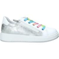 Sko Børn Lave sneakers Primigi 7381100 hvid