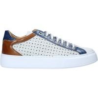 Sko Herre Lave sneakers Exton 512 hvid