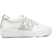 Sko Dame Lave sneakers Apepazza S1SLY11/DIA hvid