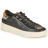 Sko Dame Lave sneakers Palladium Manufacture TEMPO 04 SYN Sort