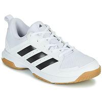 Sko Dame Indendørssport adidas Performance Ligra 7 W Hvid