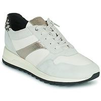 Sko Dame Lave sneakers Geox TABELYA Hvid