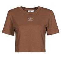 textil Dame T-shirts m. korte ærmer adidas Originals CROPPED  TEE Brun