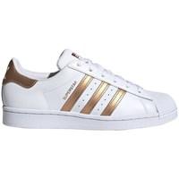 Sko Dame Lave sneakers adidas Originals Superstar W Hvid