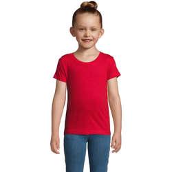textil Pige T-shirts m. korte ærmer Sols CHERRY Rojo Rojo