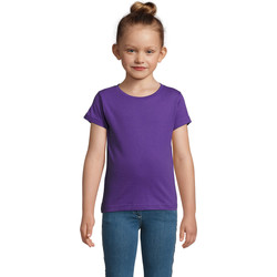 textil Pige T-shirts m. korte ærmer Sols CHERRY Morado Oscuro Violeta