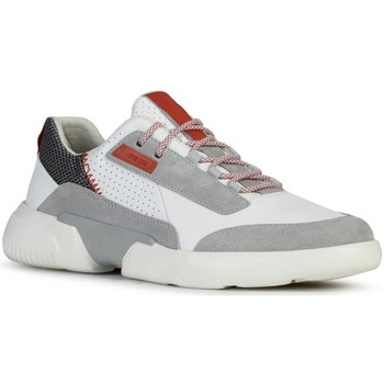 Sneakers Geox  U Smoother White Lt Grey