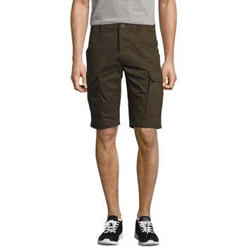textil Herre Shorts Sols Bermuda de hombre Jackson Marrón