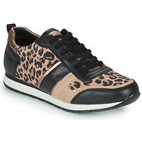 Sko Dame Lave sneakers Betty London PARMINE Sort