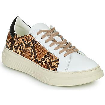 Sko Dame Lave sneakers Betty London PAROLE Hvid