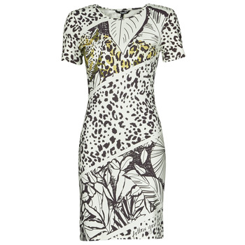 textil Dame Korte kjoler Desigual WILD Flerfarvet