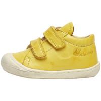 Sko Børn Lave sneakers Naturino 2012904 16 Gul