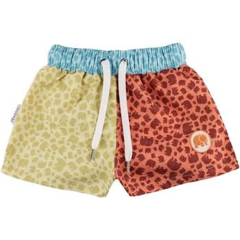textil Dreng Badebukser / Badeshorts Trendsplant BAÑADOR PISCINA NIÑO TRENSPLANT 158520BMCS Flerfarvet