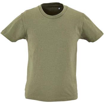 textil Børn T-shirts m. korte ærmer Sols CAMISETA DE MANGA CORTA Kaki