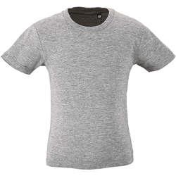 textil Børn T-shirts m. korte ærmer Sols CAMISETA DE MANGA CORTA Gris