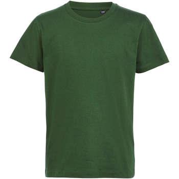 textil Børn T-shirts m. korte ærmer Sols CAMISETA DE MANGA CORTA Verde