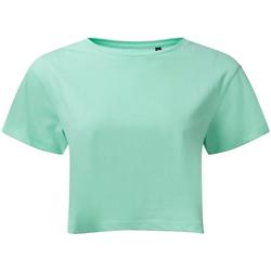 textil Dame Toppe / Bluser Tridri TR019 Peppermint