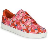 Sko Dame Lave sneakers Cosmo Paris HAJIA Pink / Blomstret