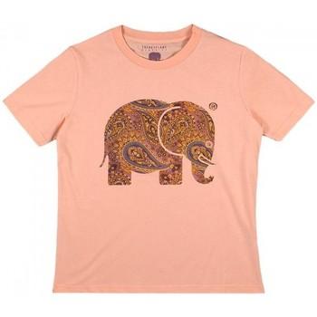 textil Dame Skjorter / Skjortebluser Trendsplant CAMISETA MUJER  029970WPTP Orange