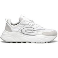 Sko Herre Sneakers Alberto Guardiani AGM003608 hvid
