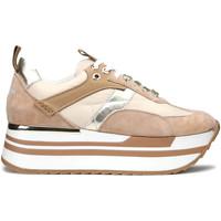 Sko Dame Sneakers Alberto Guardiani AGW004304 Beige