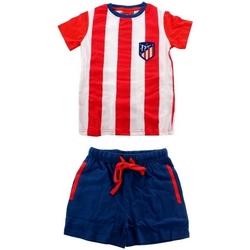 textil Herre Pyjamas / Natskjorte Atletico De Madrid 100-378 Rojo